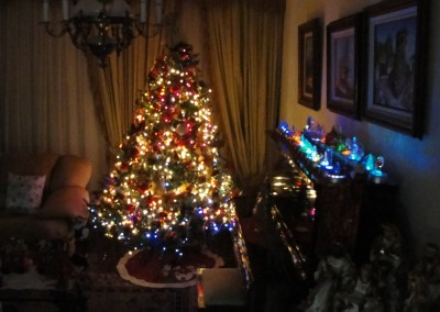 natal-colection (8)